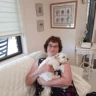 Profile image for pet sitters Sandra & Stephanie