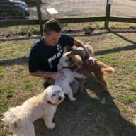 Profile image for pet sitter Jeff