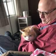 Profile image for pet sitter Paul B