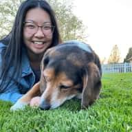 Profile image for pet sitter Megan