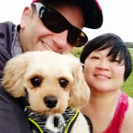 Profile image for pet sitters David & Jye