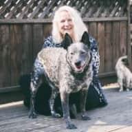 Profile image for pet sitter Elaine