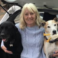 Profile image for pet sitters Christine & Mark