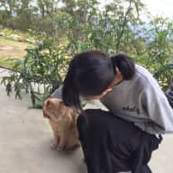 Profile image for pet sitter JingMei