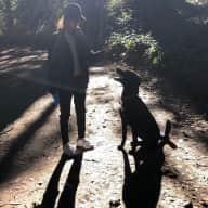 Profile image for pet sitter Leynete