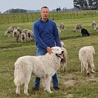 Profile image for pet sitter Juha