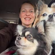 Profile image for pet sitter Leela