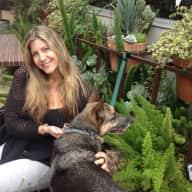 Profile image for pet sitter Tama