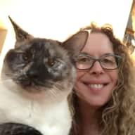 Profile image for pet sitter Bari