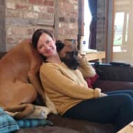 Profile image for pet sitters Abi & Mike