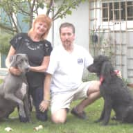 Profile image for pet sitters Marjie & Tony