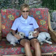 Profile image for pet sitter Diana