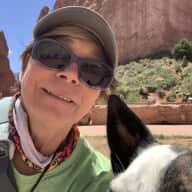 Profile image for pet sitter Sue