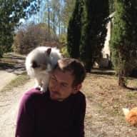Profile image for pet sitter Ian