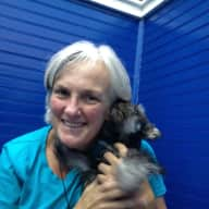 Profile image for pet sitter Diane