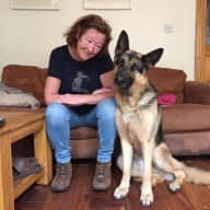 Profile image for pet sitter Rosemary