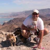 Profile image for pet sitter John
