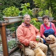 Profile image for pet sitters Melinda & Michael