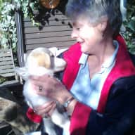 Profile image for pet sitters Peter and Pamela & Peter