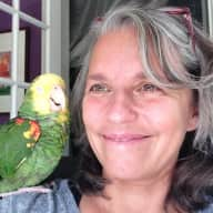 Profile image for pet sitter Gabriele