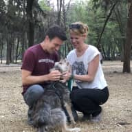 Profile image for pet sitters Amanda & Greg