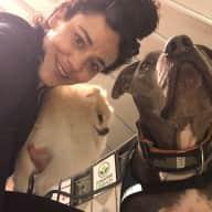Profile image for pet sitter Darya