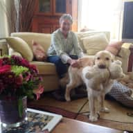 Profile image for pet sitters Beverley & Don