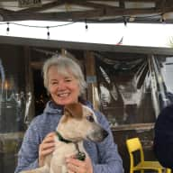 Profile image for pet sitters Susan & James