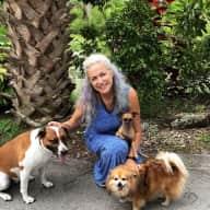 Profile image for pet sitter Katharine