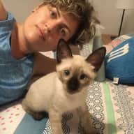 Profile image for pet sitters Beatriz & Cristina