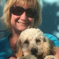 Profile image for pet sitter Lee-Anne