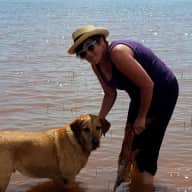 Profile image for pet sitters Janet & Rob