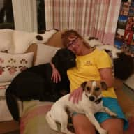 Profile image for pet sitters Eva & Michael