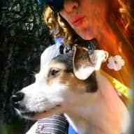 Profile image for pet sitter Penny