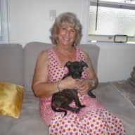 Profile image for pet sitter Beth