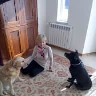 Profile image for pet sitter Amanda