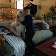 Profile image for pet sitter Andrea