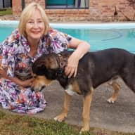 Profile image for pet sitter Sue (Freedom Sitter)