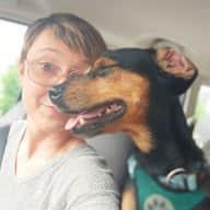 Profile image for pet sitter Janine
