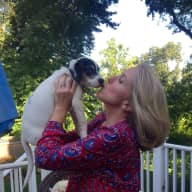 Profile image for pet sitter gina