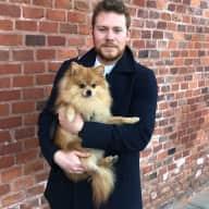 Profile image for pet sitter Hamish