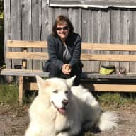 Profile image for pet sitters Sharon & Tony