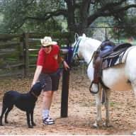 Profile image for pet sitter Melissa