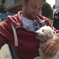 Profile image for pet sitter Simon