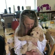 Profile image for pet sitter Tianne