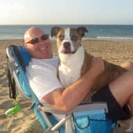 Profile image for pet sitter David