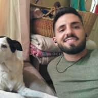 Profile image for pet sitter Tomer