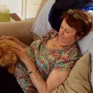 Profile image for pet sitters Brenda & Clifford