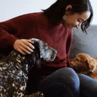 Profile image for pet sitter Kirstie
