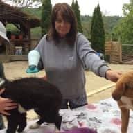 Profile image for pet sitter Patricia, martine